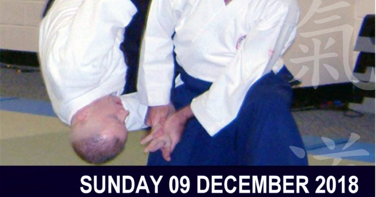 NIA Aikido Winter Course 2018 Grading