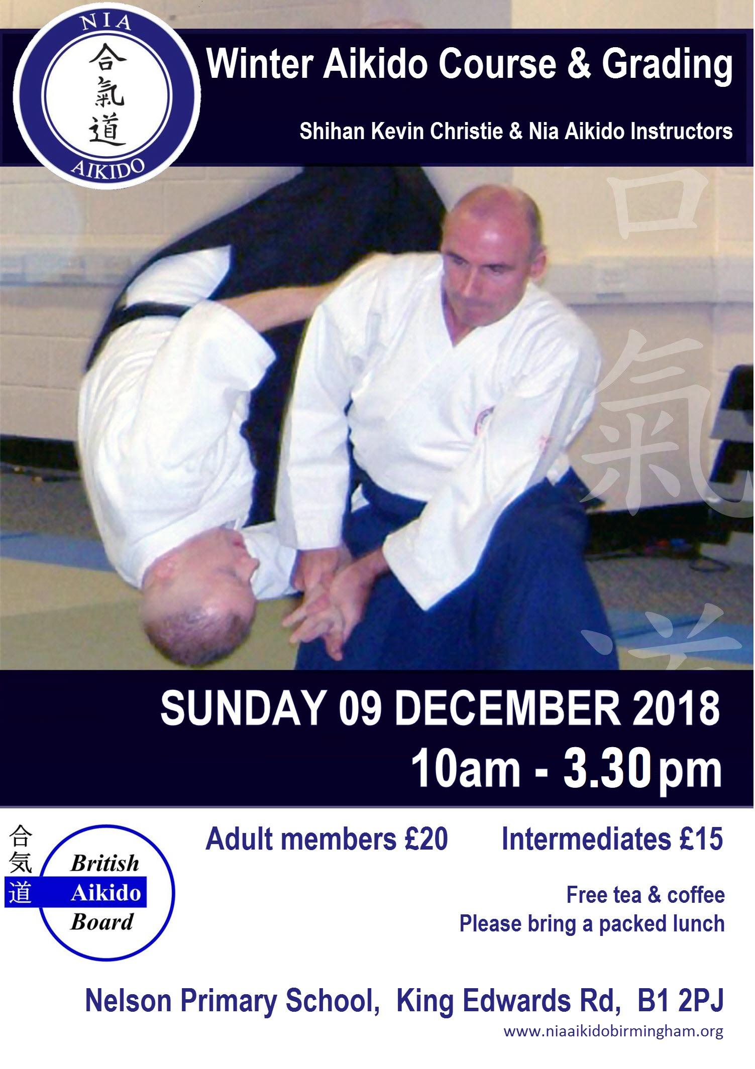 NIA Aikido Winter Course 2018 Grading