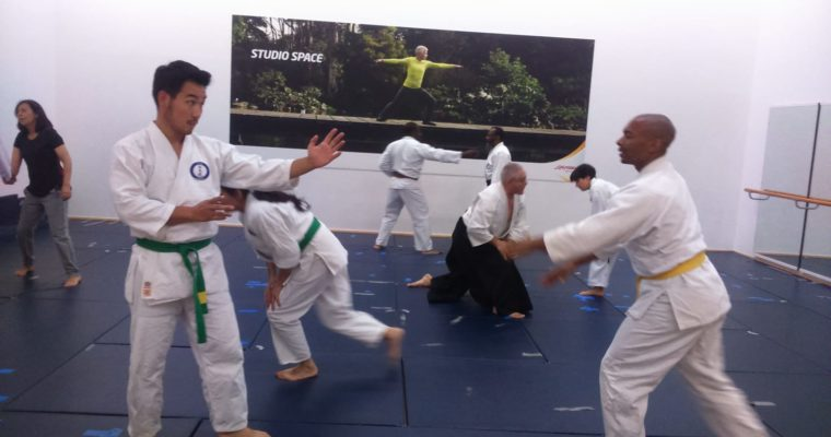 Aikido classes are back!